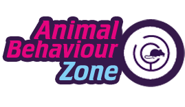 Animal Behaviour Zone